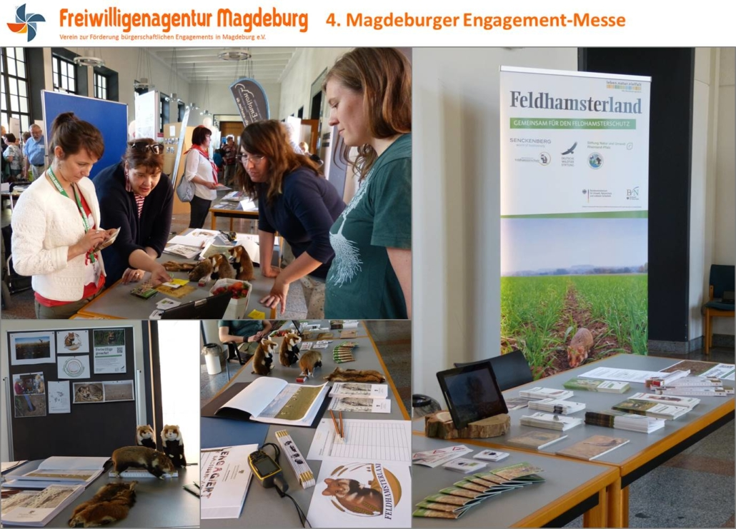 Team Feldhamsterland auf der Engagement Messe in Magdeburg