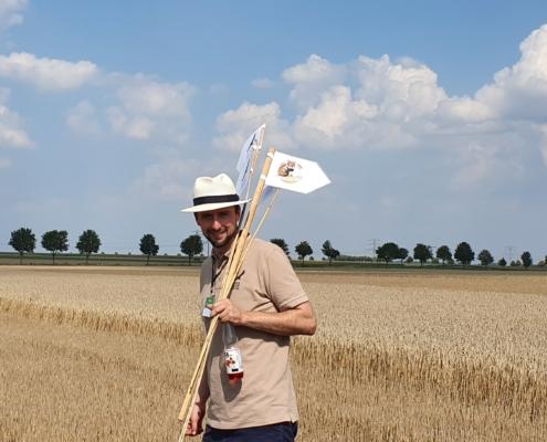 Feldhamster-Experte Moritz Franz-Gerstein leitet die Besucher des Aktionstages bei der Suche nach Feldhamster-Bauen an. Ein gefundener Bau wird mit Stöcken auf dem Feld markiert.