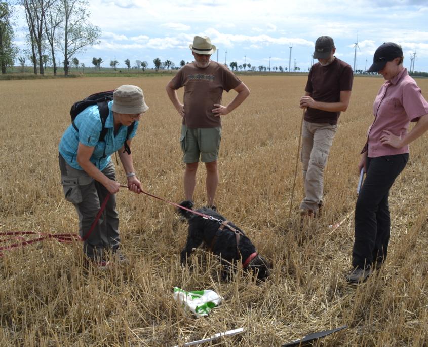 Auch ein vierbeiniger Kartierhelfer freut sich über den entdeckten Hamsterbau