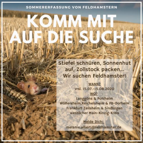 Sommerkartierung in Hessen startet bald