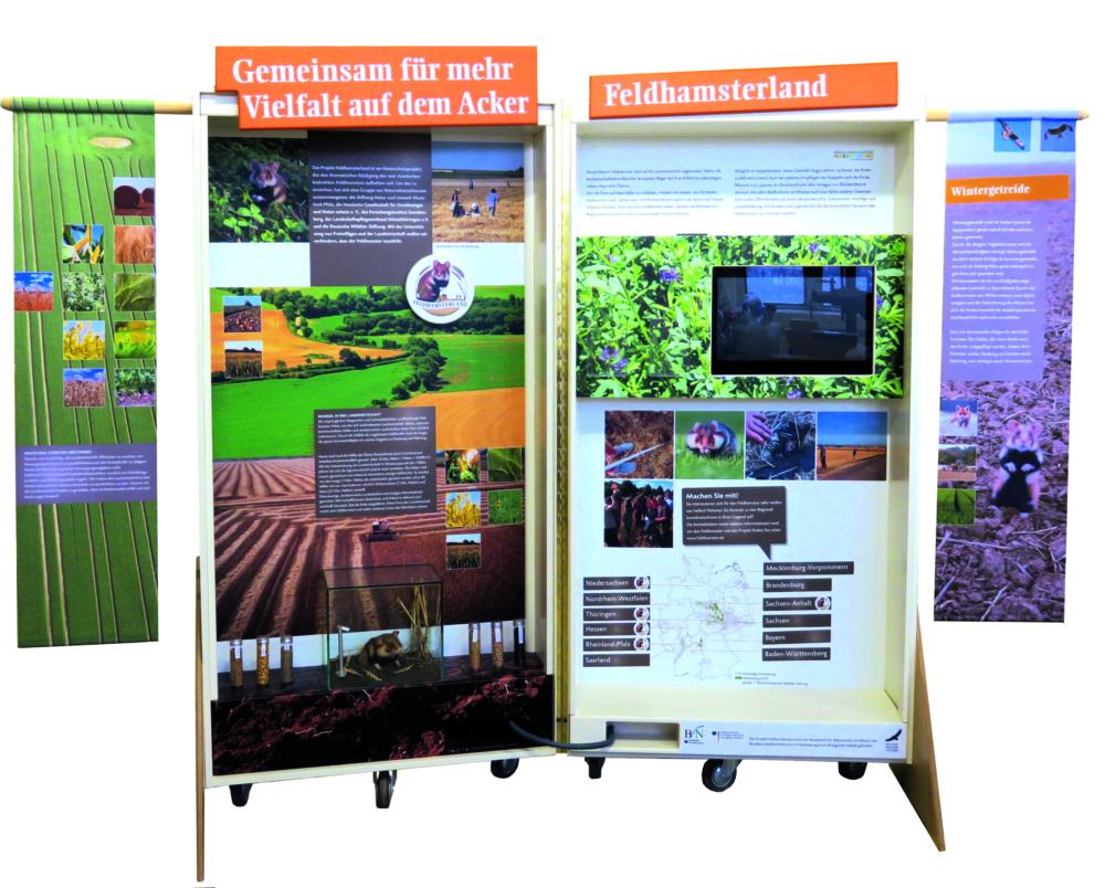 Feldhamsterland Ausstellungskoffer 1