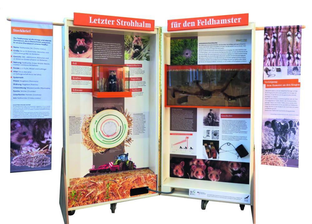 Feldhamsterland Ausstellungskoffer 2