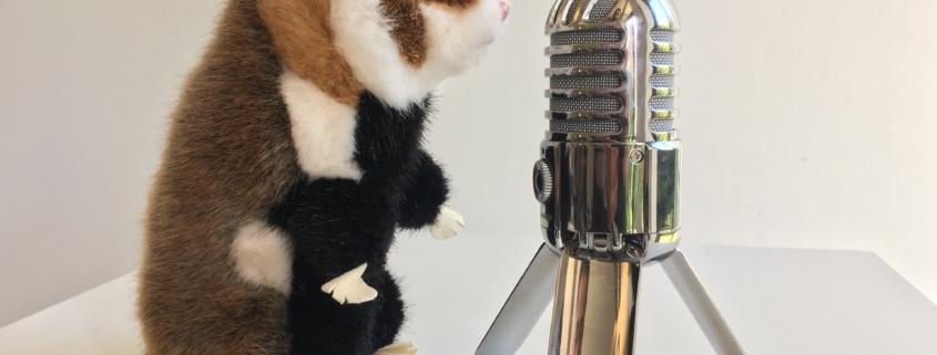 Feldhamsterland im Podcast