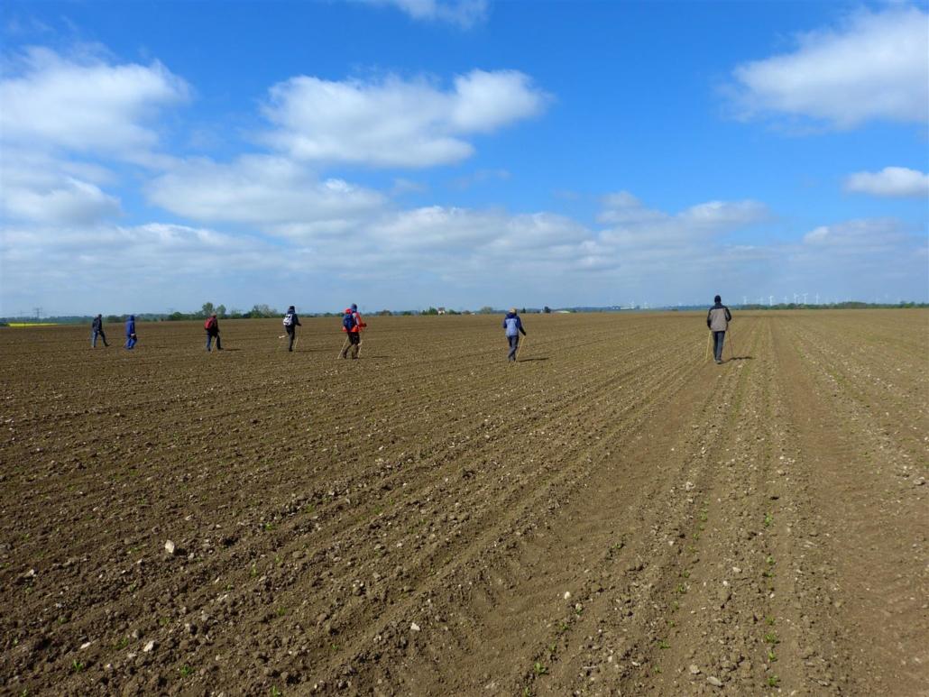 Unterwegs auf riesigen Feldern - zum Teil mehr als 120 Fußballfelder groß!