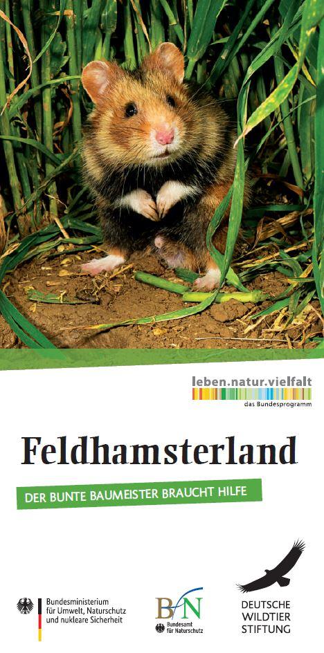 Feldhamsterland - Der Bunte Baumeister braucht Hilfe - Projektflyer