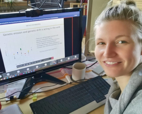 Sarah Gärtner ist Teil des Projektes Feldhamsterland in Hessen